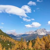bosco autunnale e vista su Misurina